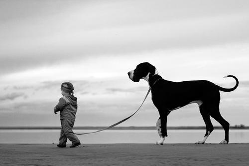 dziecko_i_pies_3.jpg