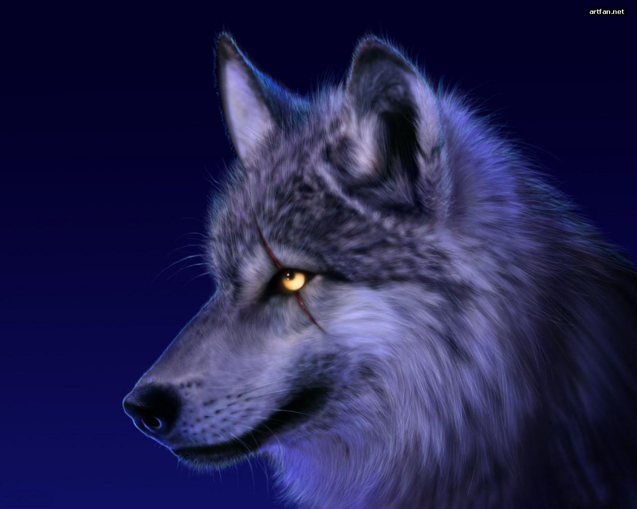 Fani Wolfblood