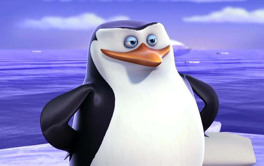 Skipper-penguins-of-madagascar-33153179-906-570.jpg