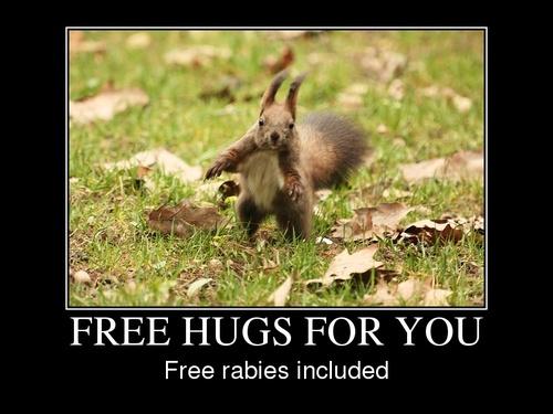 free-hugs_large.jpg