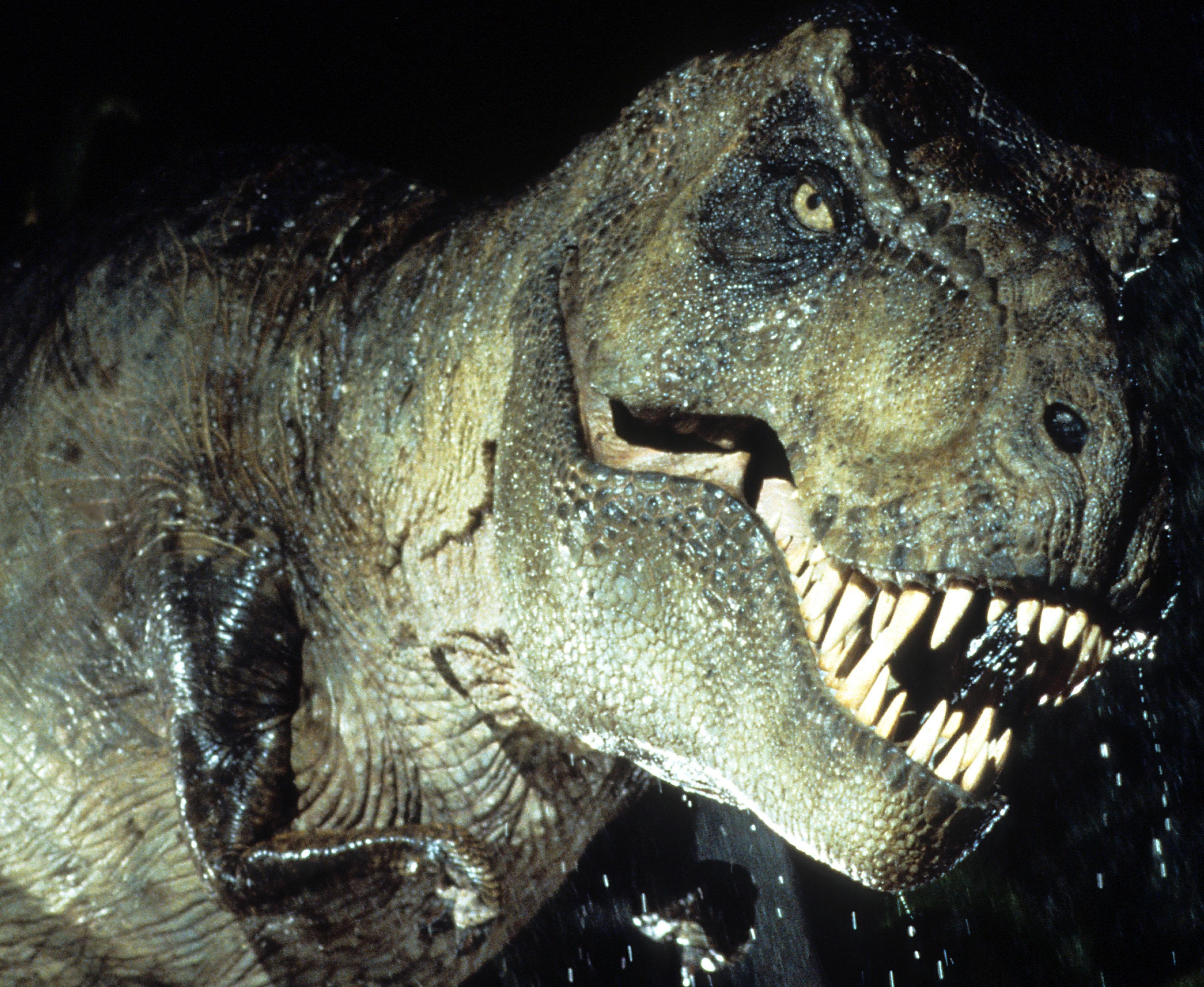 tyranozaur  animatroniczny  robot z jurassic park 1993