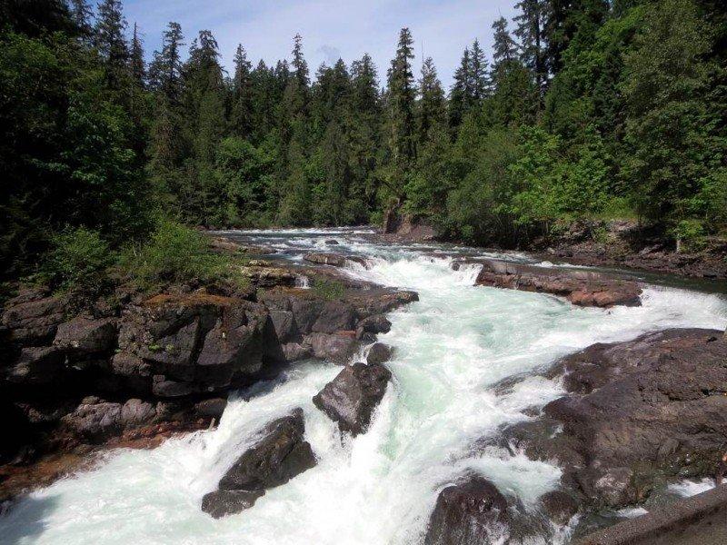 stamp-river-provincial-park.jpg