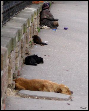 Homeless__2__by_unknownphotographers.jpg