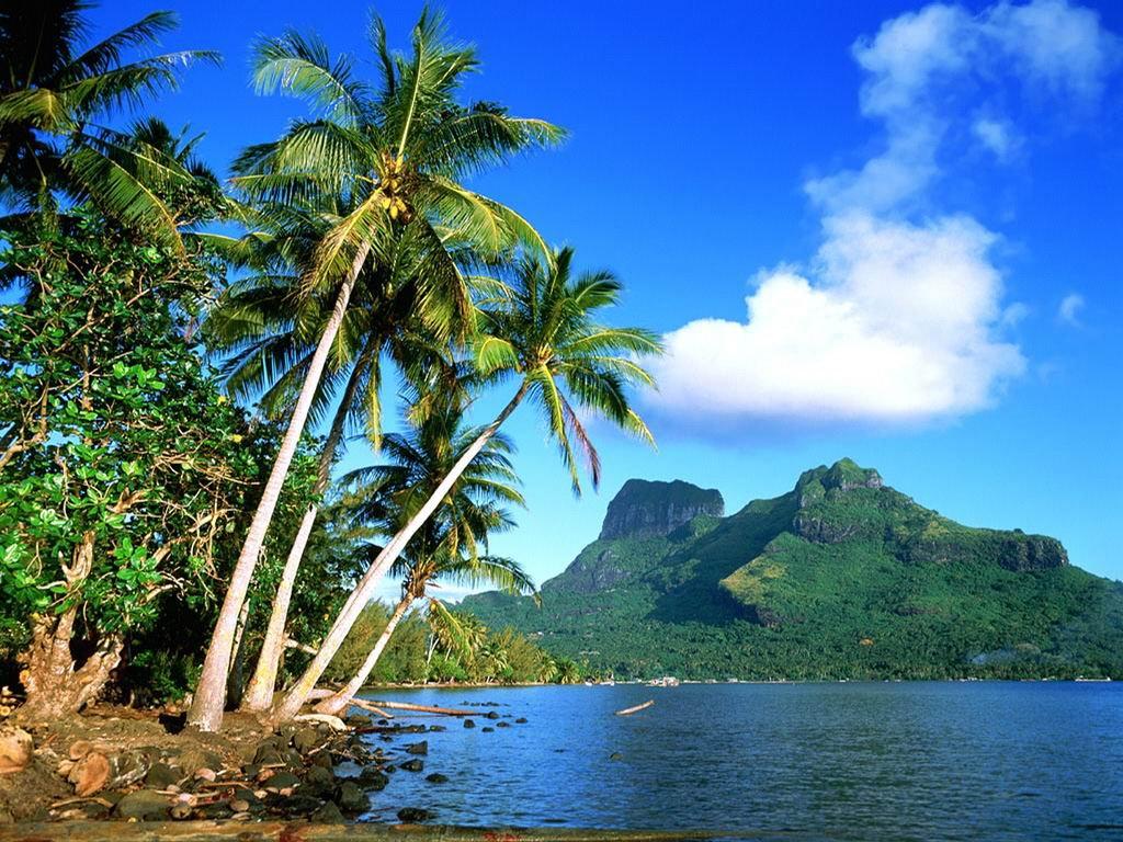 Chcemy już wakacji !♥