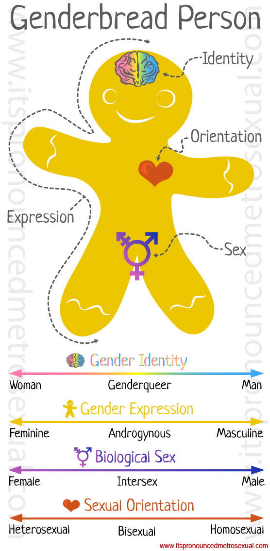 genderbread-person-gender-identity-graphic.jpg
