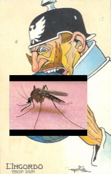 Nie dla bestialskiego uboju komarów!