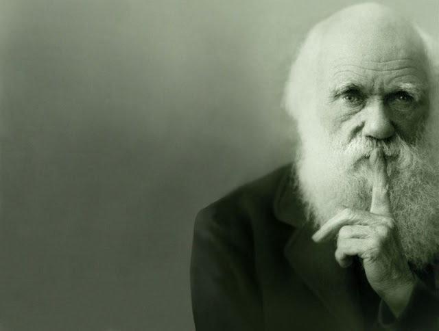 Ewolucjoniści