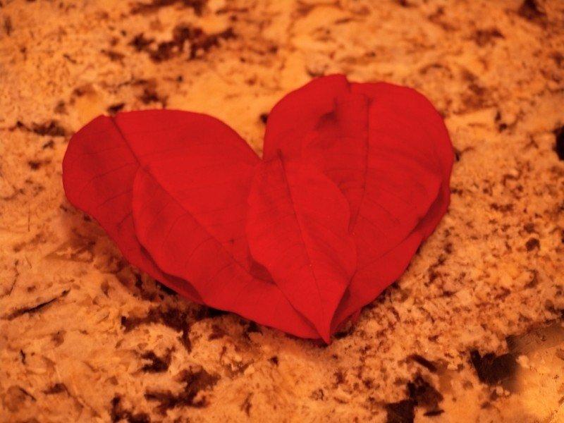 valentines-day-20.jpg
