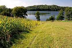 250px-Jezioro_Hancza%2C_Poland%2C_Aug_2004.jpg