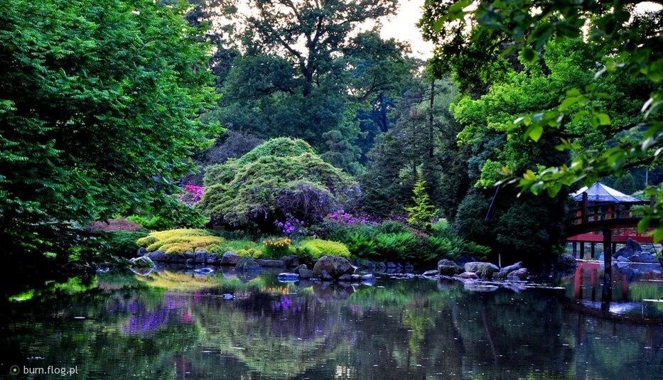 1607768_wroclaw-park-szczytnicki-ogrod-japonski.jpg