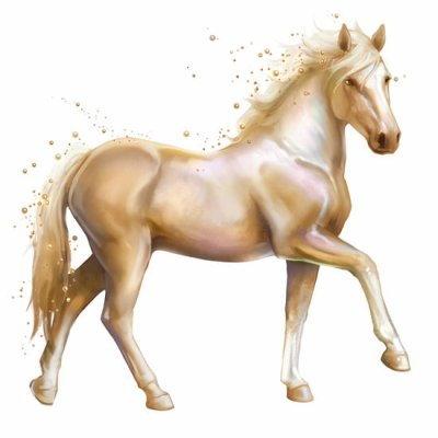 Magiczne Konie