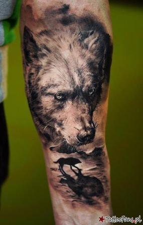 Czy Mając Tatuaż Na Przedramieniu A Dokładnie Wilka Można