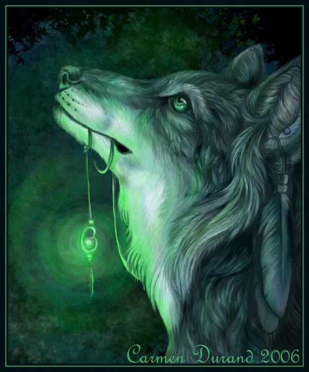 Wielbiciele Magicznych Wilków