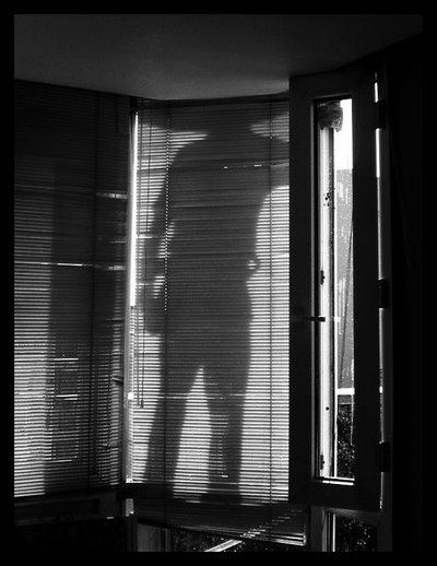 burglar_enters_the_window_by_Felis_Tigris.jpg