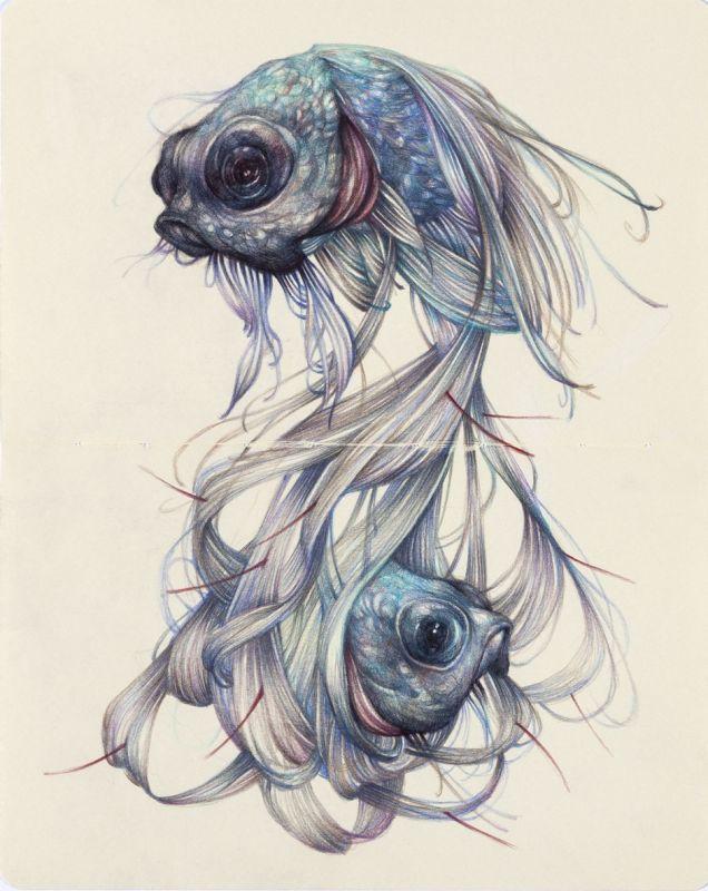 Dwie ryby