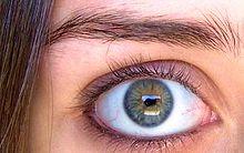 220px-Movie_Eyes.jpg