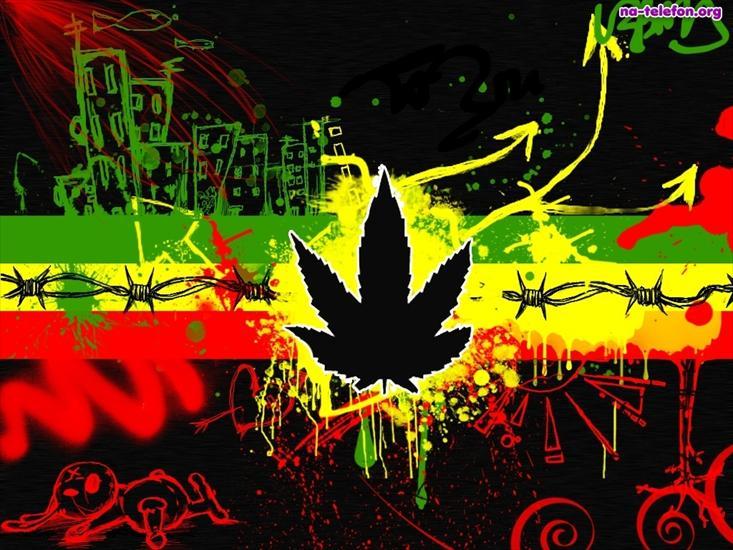 Jamajczyk29