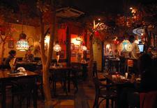 ogródek letni - Restauracja Sphinx (CH Au... zdjęcie 3