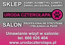 salon urody czterołapa - URODA CZTEROŁAPA salon pi... zdjęcie 10