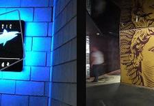 folia dekoracyjna - Folie okienne Deko Line zdjęcie 7