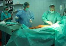 skleroterapia piankowa - Centrum Flebologii. Klini... zdjęcie 8