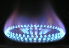 gaz en power - EN POWER SPÓŁKA Z OGRANIC... zdjęcie 5