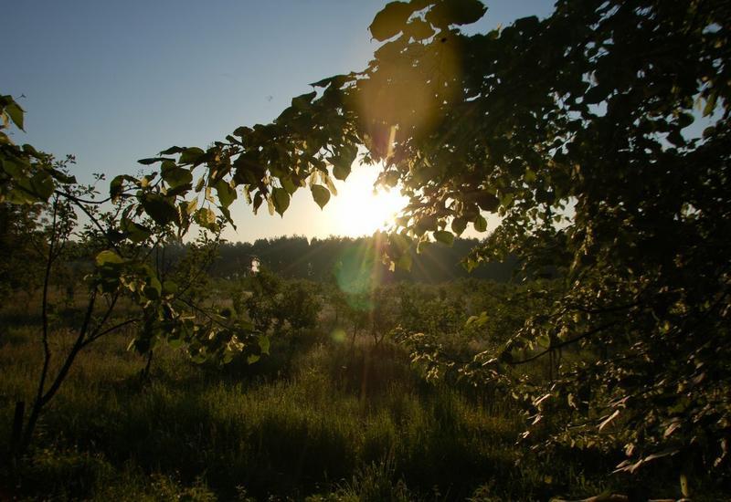 Gospodarstwo agroturystyczne, wypoczynek, noclegi