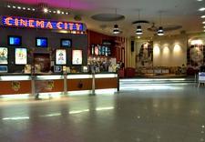 film - Cinema City Krewetka zdjęcie 2