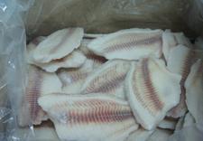 kotlety rybne - Laguna. hutrownia ryb zdjęcie 7