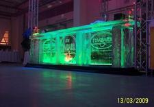rzeźbienie w lodzie - Ice Evolution. Rzeźby Lod... zdjęcie 6