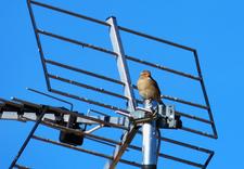 anteny satelitarne - Jacek Grudziński zdjęcie 3