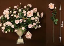 Róża (różowa)