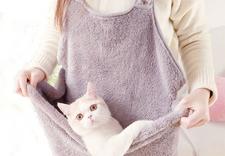 automatyczne poidło dla kota - OFiuFiuPL zdjęcie 2