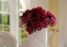 wesele Pruszków - Dom weselny Astoria zdjęcie 11