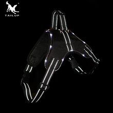 Uprząż - szelki dla psa LED