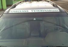 dla psów - CENTRUM ZDROWIA I URODY Z... zdjęcie 10