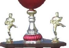 dyplomy - Konsul Trofea Sportowe zdjęcie 5