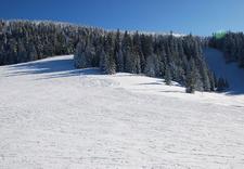 formowanie buta - Sport Osicki. Narty, snow... zdjęcie 1