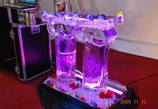lód do drinków - Ice Evolution. Rzeźby Lod... zdjęcie 5