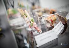 sery - Perfekt Events & Catering zdjęcie 3