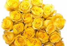 dzień kobiet - Łódzka Kwiaciarnia Pokole... zdjęcie 4
