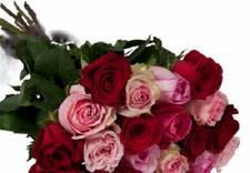 kwiaty na walentynki - Łódzka Kwiaciarnia Pokole... zdjęcie 3