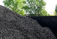 węgiel orzech - IMEX-PIECHOTA I Sp. z o.o... zdjęcie 11