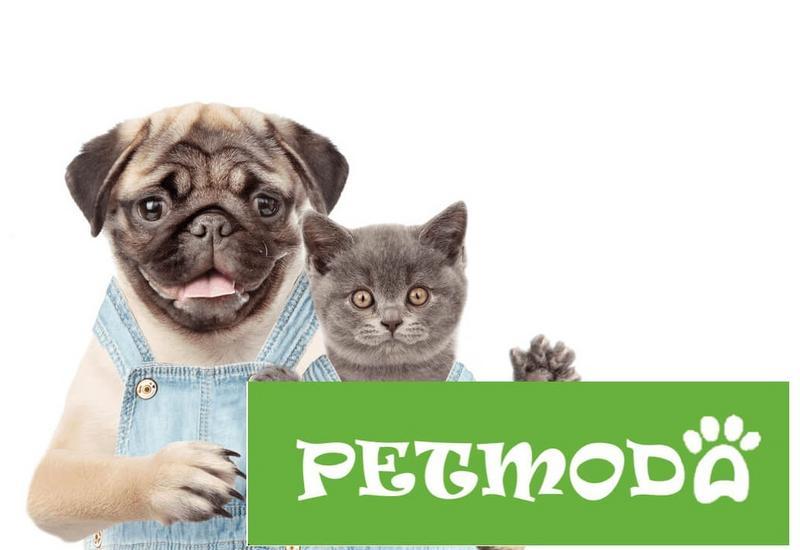 akcesoria dla zwierząt - Irmina Delgado Latola, Pe... zdjęcie 1