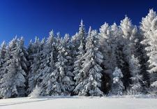 narciarska - Stacja Narciarska Chyrowa... zdjęcie 4