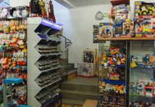 kubuś - KUBUŚ Zabawki i Art. Papi... zdjęcie 16