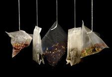 herbata Hyson czarna - Galeria Zdrowia Sp. z o.o... zdjęcie 5