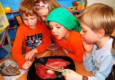 zajęcia dla dzieci - Niepubliczna Podstawowa S... zdjęcie 29