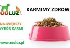 szampon dla psa - F.H.P.U Zooluz Dariusz De... zdjęcie 3
