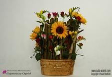 kompozycje florystyczne - Pracownia Florystyczna Ta... zdjęcie 8